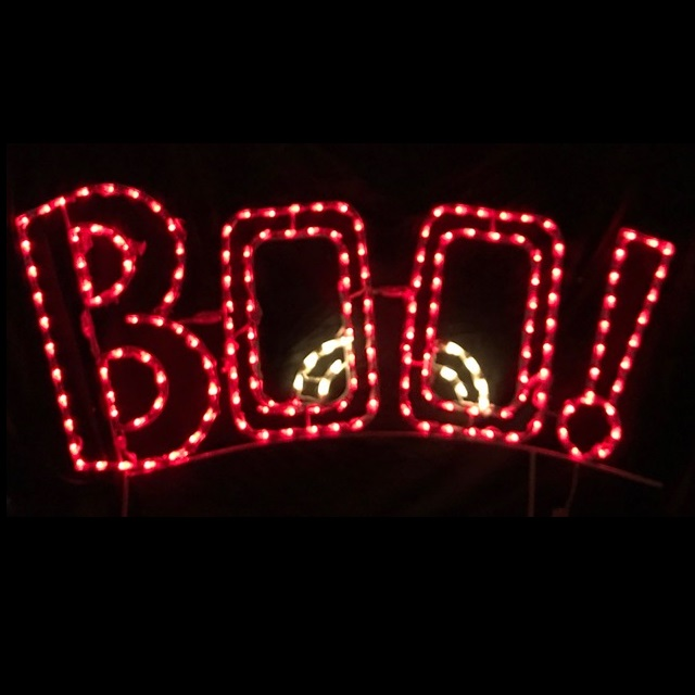 BOO! LED Lighted Outdoor Halloween Decoration
