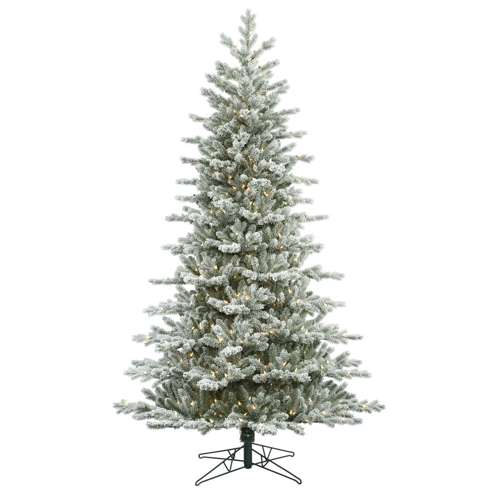 7.5 Foot Frosted Eastern Frasier Fir Artificial Christmas Tree 700 DuraLit Incandescent Clear Mini Lights