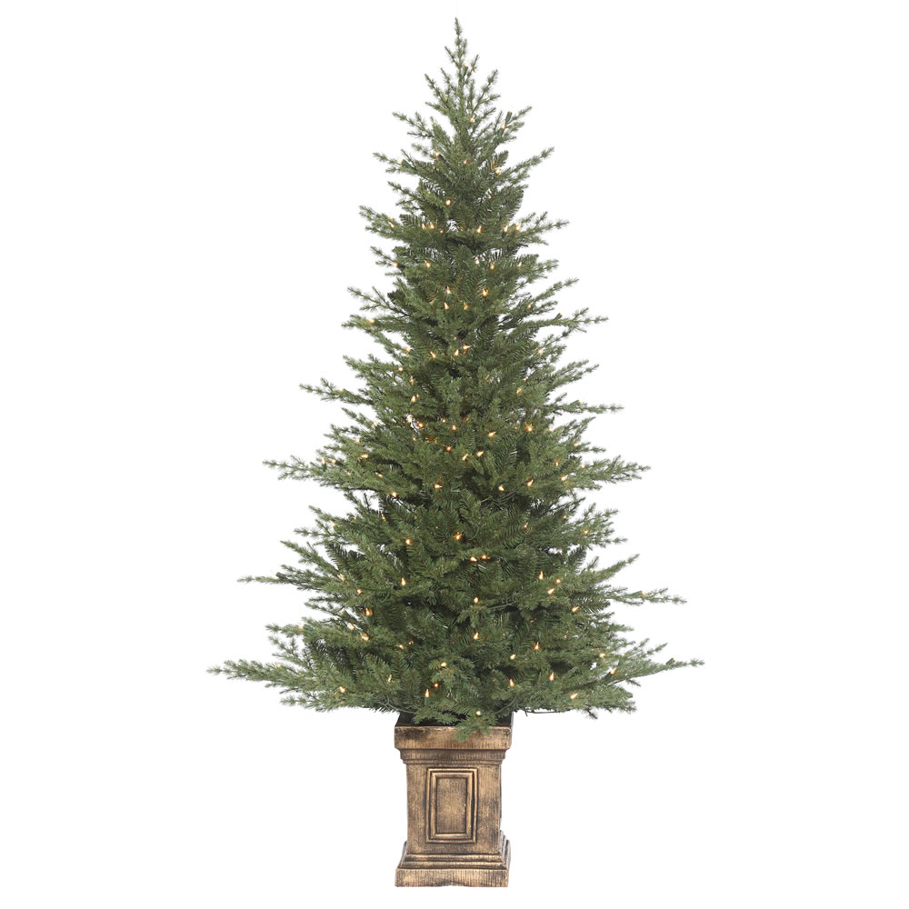 6 Foot Potted Ariba Mixed Pine Tree 300 DuraLit Incandescent Clear Mini Lights