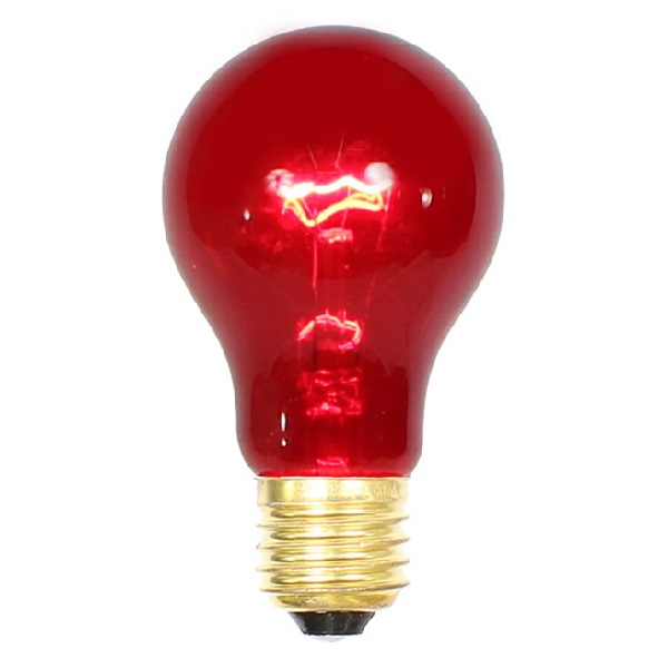 25 Incandescent A19 Red Transparent Replacement Light Bulbs - 25 Watts