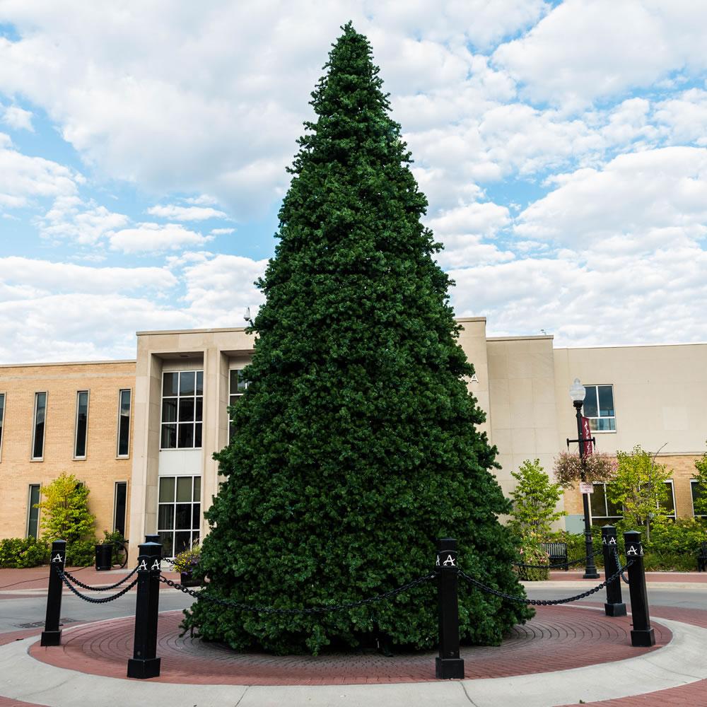 30 foot new grand teton artificial christmas tree unlit 30 foot tree 184 inch diameter item number g125830 price 2139999