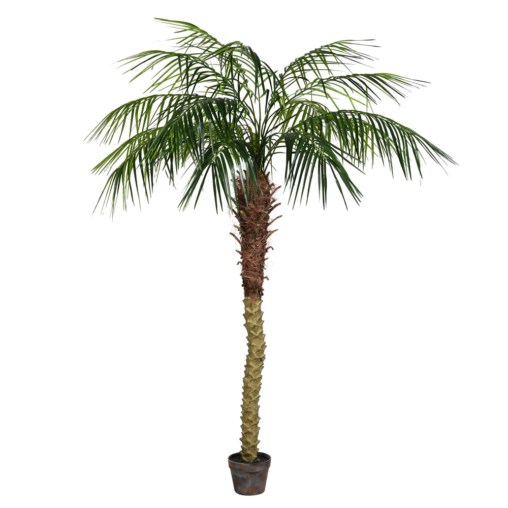 6 Foot Green Phoenix Artificial Potted Palm Tree Unlit