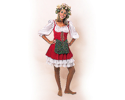 Miss Santa Costume Small To Medium