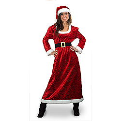 Charming Ms. Santa Costume Extra Large