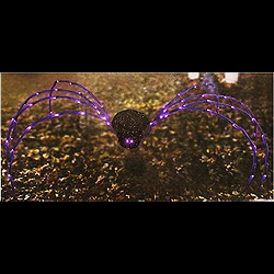 Giant Spider Lighted Outdoor Halloween Decoration