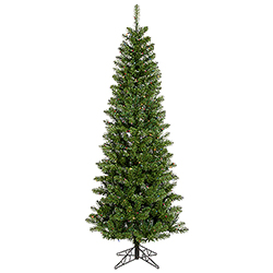 6.5 Foot Salem Pencil Pine Artificial Christmas Tree 250 DuraLit Multi Lights