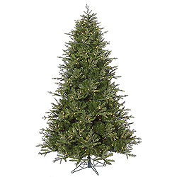 6.5 Foot Madison Frasier Artificial Christmas Tree 550 DuraLit Clear Lights