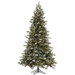 10 Foot Frosted Balsam Fir Artificial Christmas Tree 1450 LED Warm White Lights