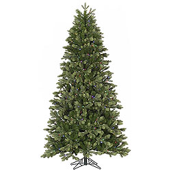 9 Foot Del Mar Frasier Fir Artificial Christmas Tree 1050 LED Multi Lights