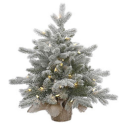 24 Inch Frosted Sable Artificial Christmas Tree 50 DuraLit Clear Lights