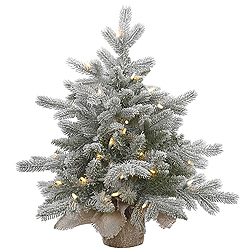 24 Inch Frosted Sable Artificial Christmas Tree 50 LED Warm White Lights