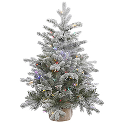 36 Inch Frosted Sable Pine Artificial Christmas Tree 100 DuraLit LED M5 Italian Multi Color Mini Lights