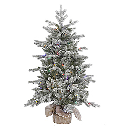 4 Foot Frosted Sable Pine Artificial Christmas Tree 100 LED Multi Lights