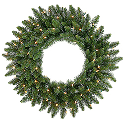24 Inch Camdon Fir Wreath 50 DuraLit Clear Lights