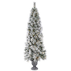 5.5 Foot Potted Frosted Brewer Pine Artificial Christmas Tree 150 Clear Lights