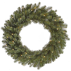 24 Inch Colorado Spruce Wreath 40 LED Warm White Lights