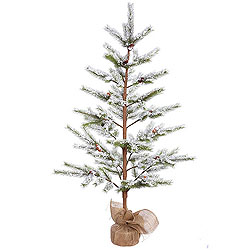 5 Foot Flocked Desert Pine Artificial Christmas Tree Unlit