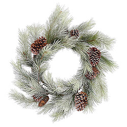 24 Inch Frosted Bellevue Pine Wreath