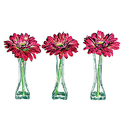 Gerbera Flower In A Mini Vase With Acrylic Water - Box Of 3