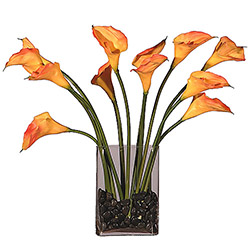 Natural Looking Dozen Peach Callas Glass Vase