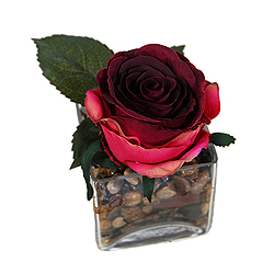 Red Rose Artificial Plant Glass Square Vase