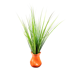 Fresh Grass In Orange Vase