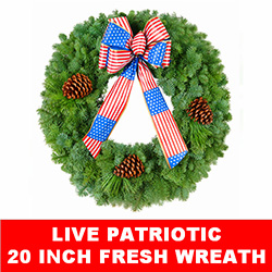 20 Inch Live Patriotic Wreath - Fresh Wreath