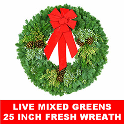 Live Mixed Greens Fresh Christmas Wreath