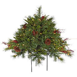 2 Foot Cibola Berry Bush 3 Foot Wide 100 DuraLit Clear Lights
