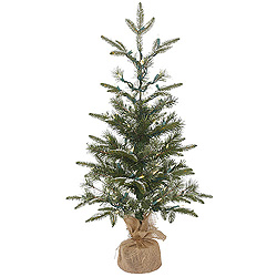 3 Foot Frosted Pasco Mixed Pine Artificial Christmas Tree 50 LED Warm White Lights