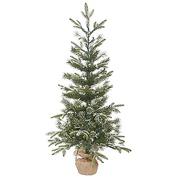 4 Foot Frosted Pasco Mixed Pine Artificial Christmas Tree 100 LED Warm White Lights