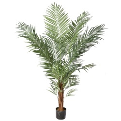 6.5 Foot Potted Areca Palm Tree