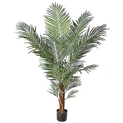 8.5 Foot Potted Areca Palm Tree