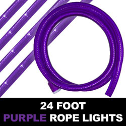 Purple Rope Lights 24 Foot