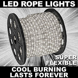 30 Foot Clear LED Rope Lights