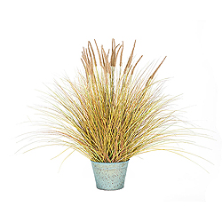 39 Inch Brown Dogtail Grass Bush In A Metal Pot