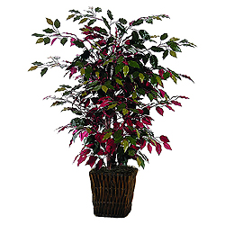 4 Foot Capensia Bush in Willow Basket Artificial Floor Plant