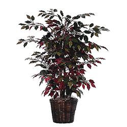 4 Foot Capensia Bush in Rattan Basket Artificial Floor Plant