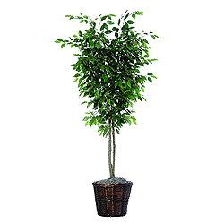 6 Foot Ficus Deluxe Potted Artificial Plant