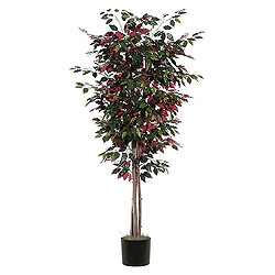 6 Foot Capensia Deluxe Artificial Plant