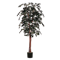 6 Foot Sakaki Deluxe Artificial Plant
