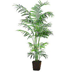 6 Foot Deluxe Tropical Palm Tree Bush