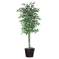 6 Foot Variegated Ficus Potted Artificial Plant