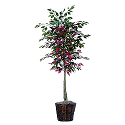 6 Foot Capensia Potted Artificial Plant