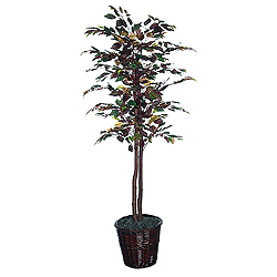 6 Foot Mystic Ficus Potted Artificial Plant