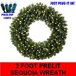 Sequoia 2 Foot Lighted Christmas Wreath 50 Pure White Lights