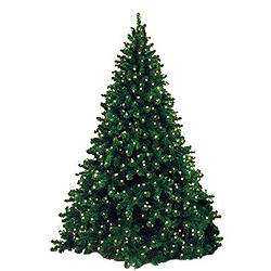 12 Foot Classic Sequoia Artificial Christmas Tree 2500 LED Warm White Lights