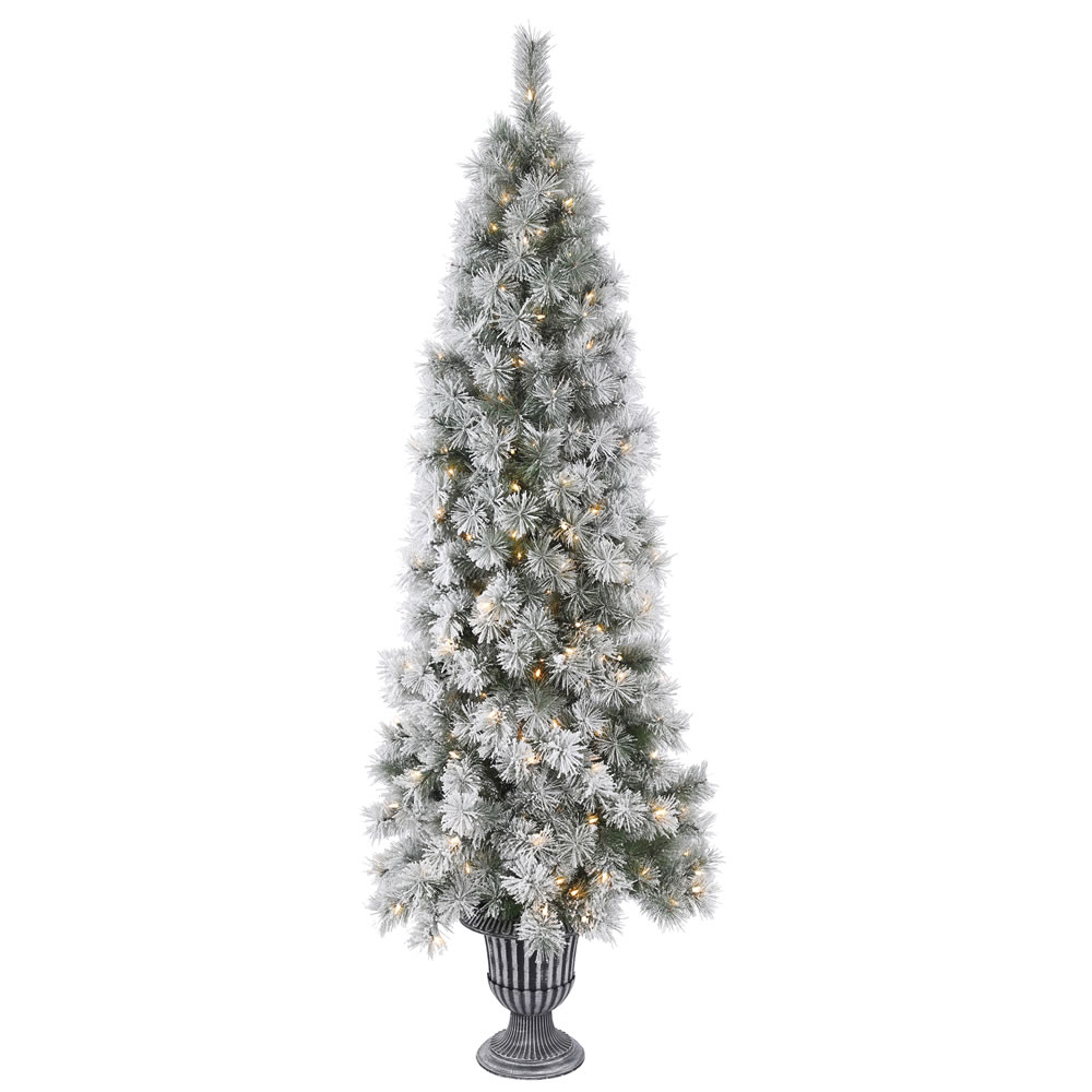 5.5 Foot Frosted Brewer Pine Artificial Potted Christmas Tree 150 Incandescent Clear Mini Lights