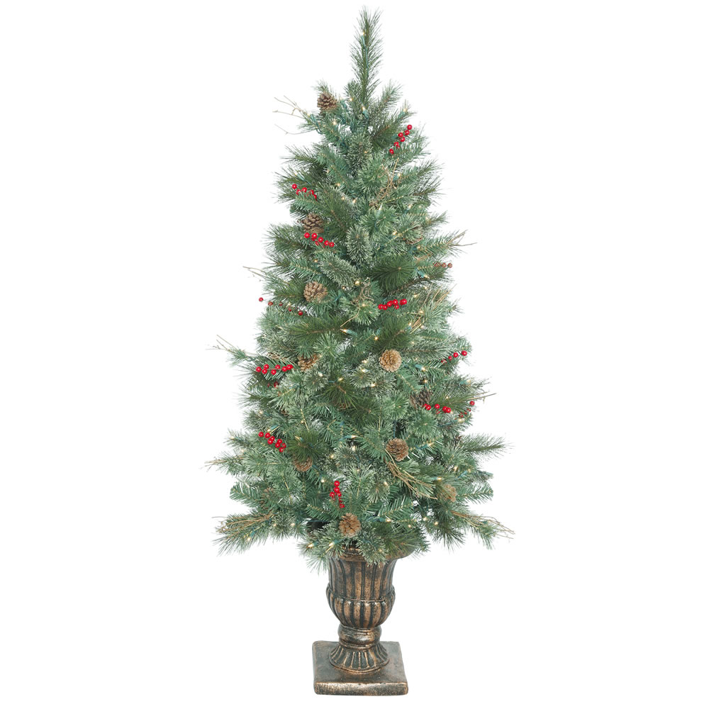 5.5 Foot Bristol Danbridge Pine Artificial Potted Christmas Tree 200 DuraLit Incandescent Clear Mini Lights