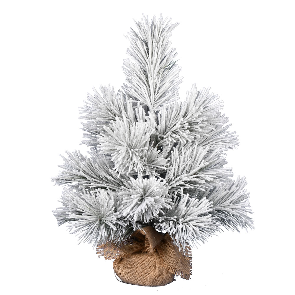 2 Foot Frosted Beckett Pine Tabletop Artificial Christmas Tree Unlit
